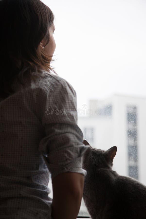 Menina e gato que olham para fora a janela fotos de stock
