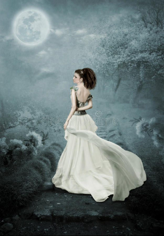 A menina e a lua ilustração royalty free