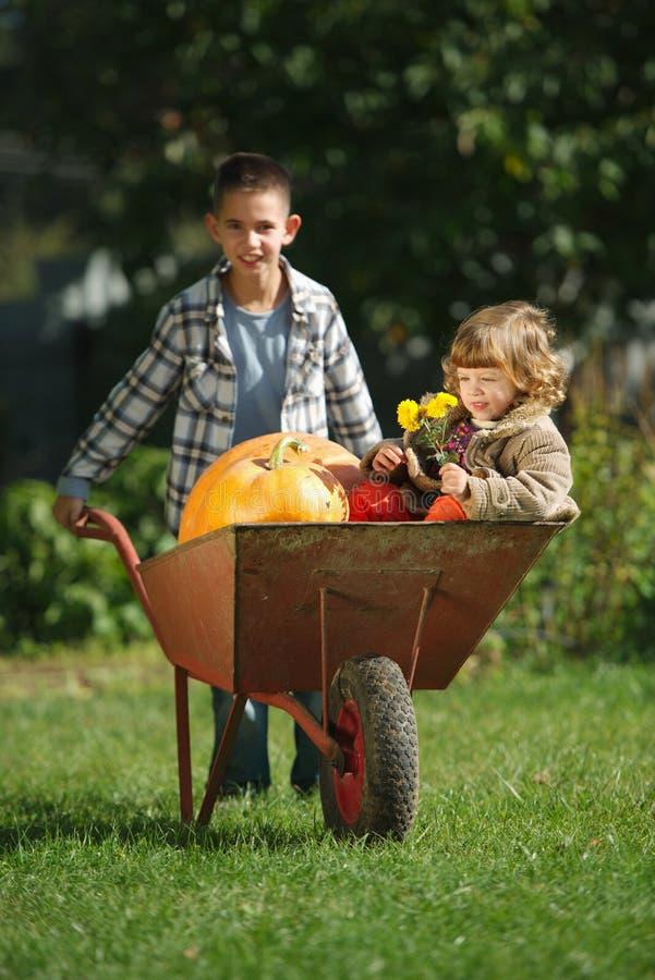 Menina e menino com as abóboras no jardim fotografia de stock