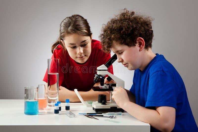 Menina e menino que usa o microscópio fotografia de stock royalty free