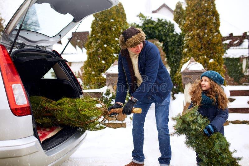 A menina e o pai de sorriso obtêm a árvore de Natal fora do tronco de carro perto de sua casa fora A filha ajuda o paizinho com fotografia de stock royalty free