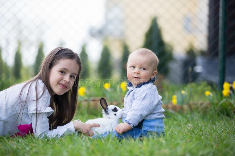 Menina e seu irmão do bebê, jogando com coelho branco em p fotos de stock royalty free