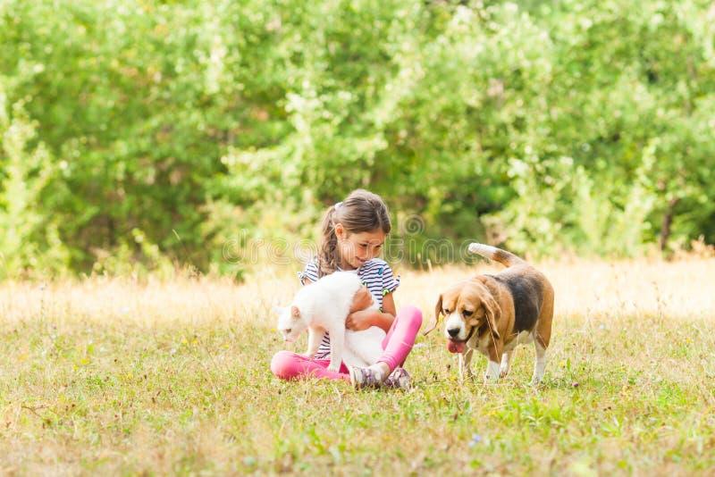 Menina e seus animais de estimação que jogam como melhores amigos imagens de stock