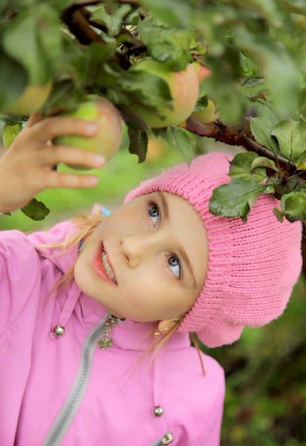 A menina e uma maçã-árvore fotos de stock