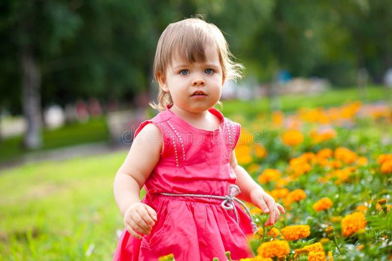 Menina em flores alaranjadas fotos de stock royalty free