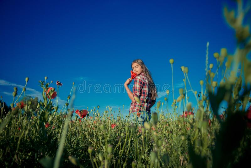 Menina em Poppy Field fotografia de stock royalty free