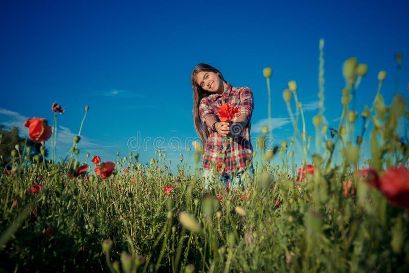 Menina em Poppy Field fotos de stock
