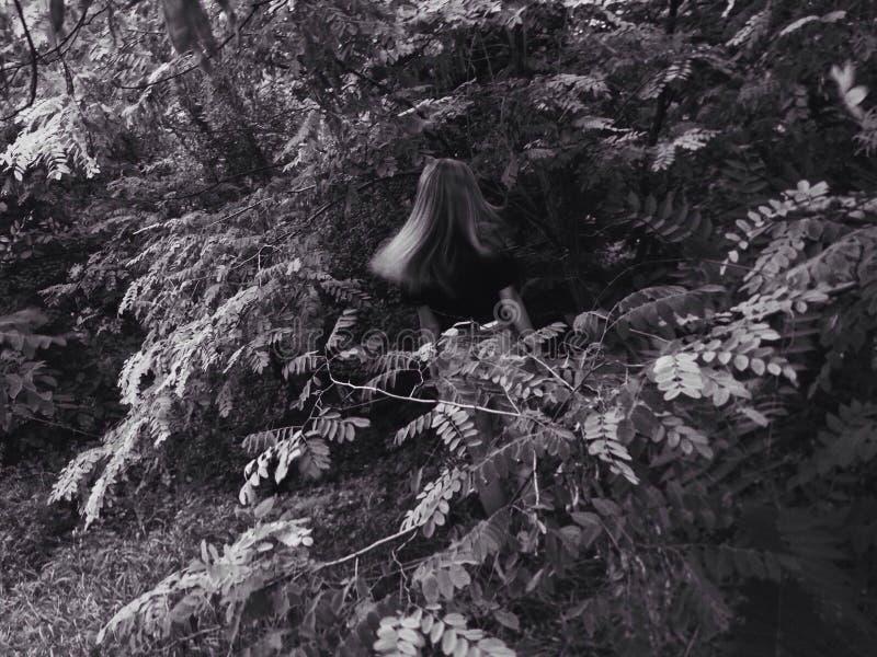 Menina em selvagem fotografia de stock