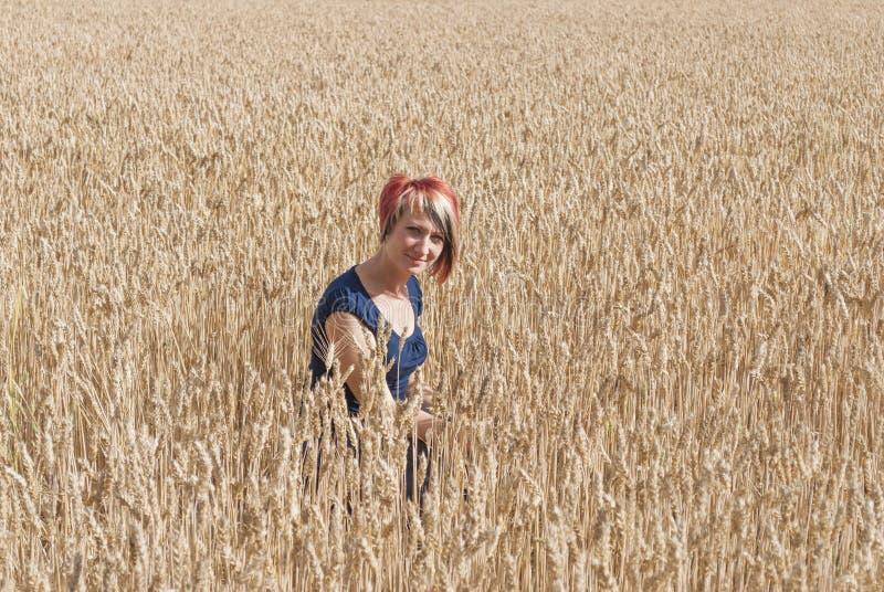 Menina em um campo de trigo. imagem de stock