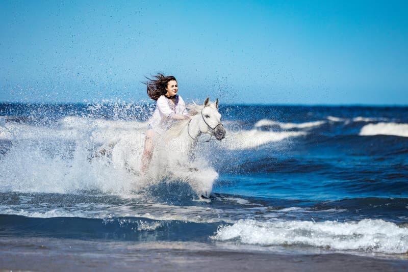 Menina em um cavalo branco que ataca através da água fotografia de stock royalty free