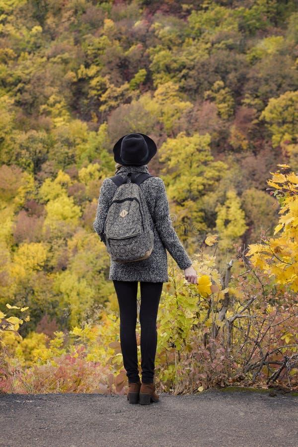 Menina em um chap?u com um ramalhete das folhas amarelas Aprecia??o da opini?o da parte traseira da floresta do outono imagem de stock royalty free