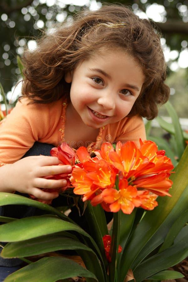 Menina em um jardim do miniata do clivia imagens de stock