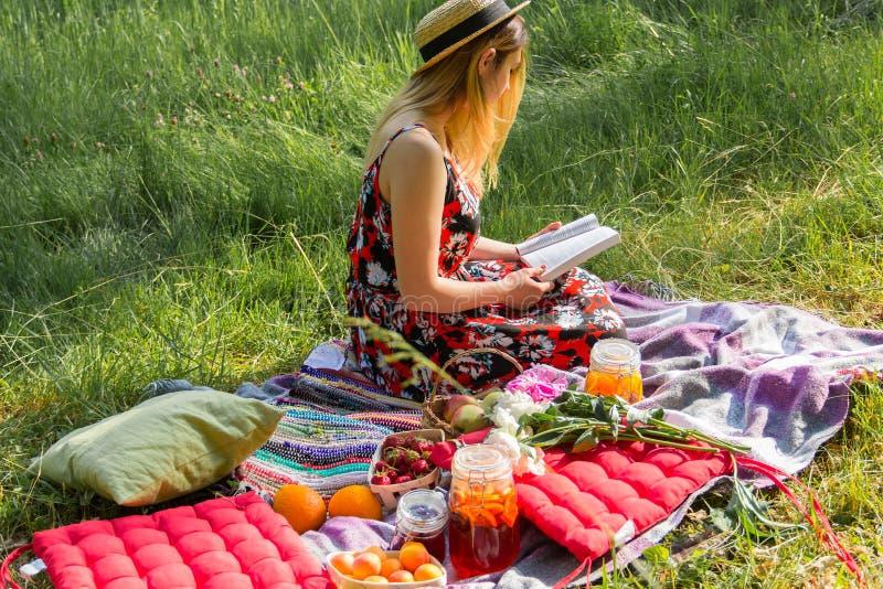 A menina em um piquenique lê o livro imagens de stock