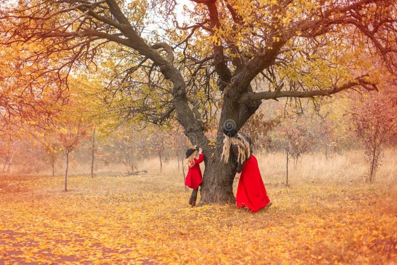 A menina em um revestimento vermelho corre em torno de uma árvore velha em um jardim do outono e sua mamã fode acima imagens de stock