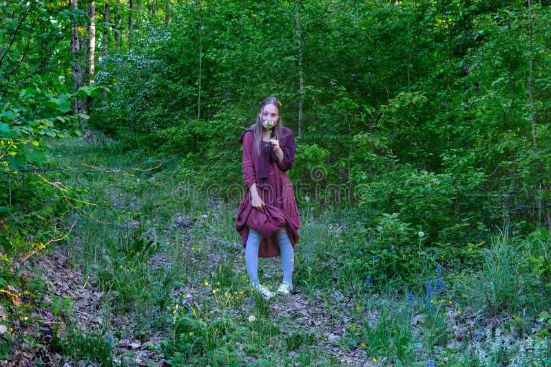 A menina em um vestido do clarete na madeira fotografia de stock royalty free