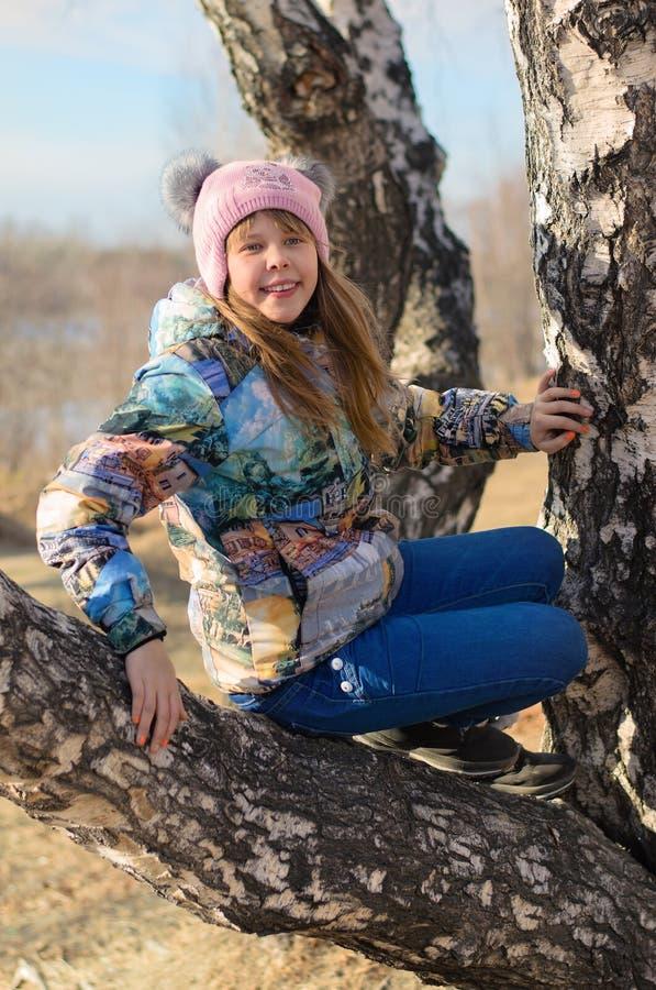 A menina em uma árvore. imagens de stock