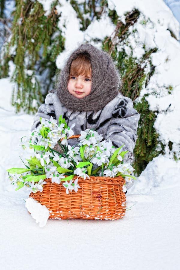 Menina em uma madeira do inverno imagens de stock
