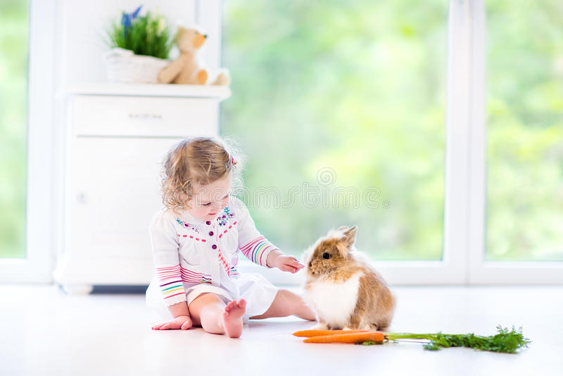 Menina encaracolado bonita da criança que joga com um coelho real imagens de stock royalty free