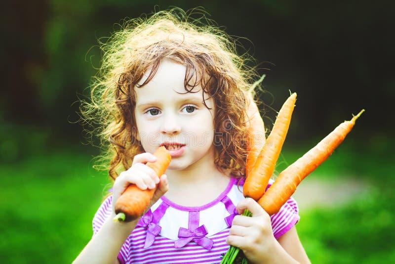 Menina engraçada com grupo das cenouras fotografia de stock