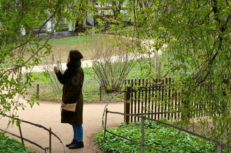 Menina ereta que olha o telefone do telefone no parque imagem de stock