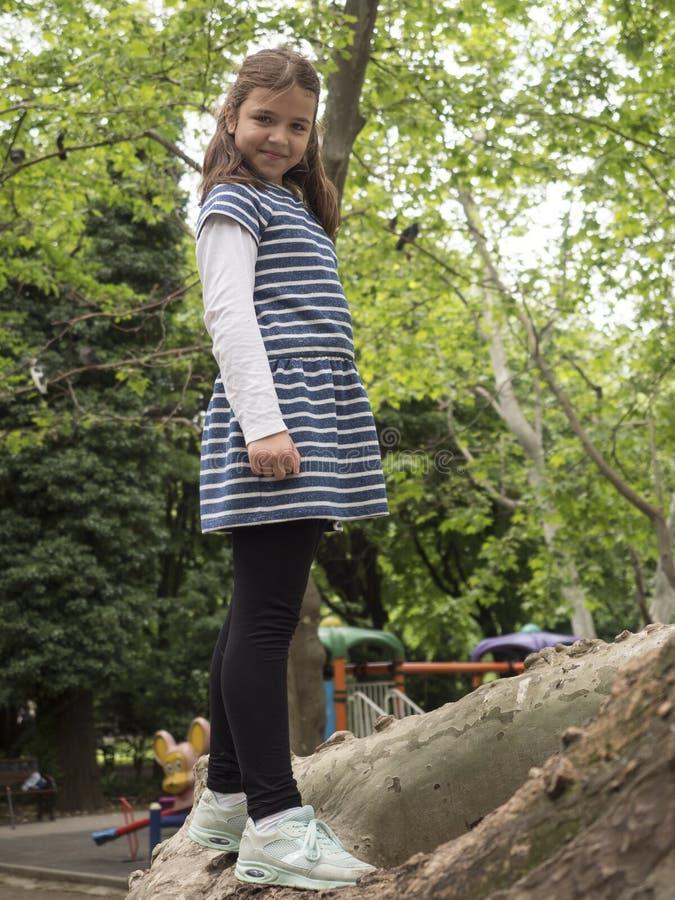 Menina escalada em uma árvore imagem de stock