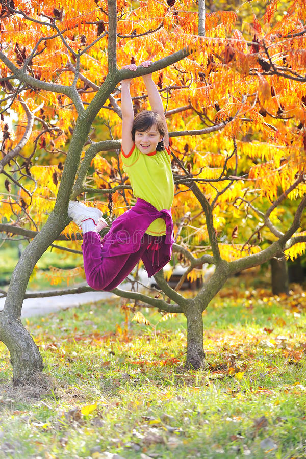 Menina escalada na árvore fotos de stock
