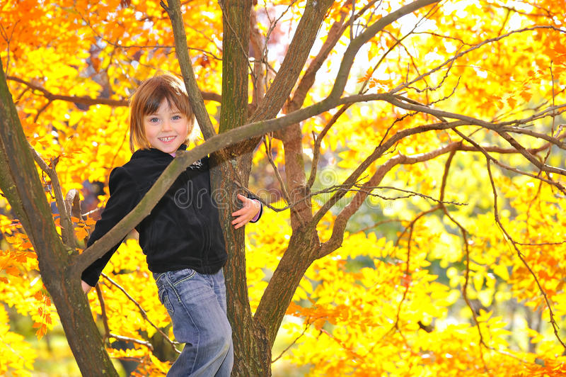 Menina escalada na árvore foto de stock
