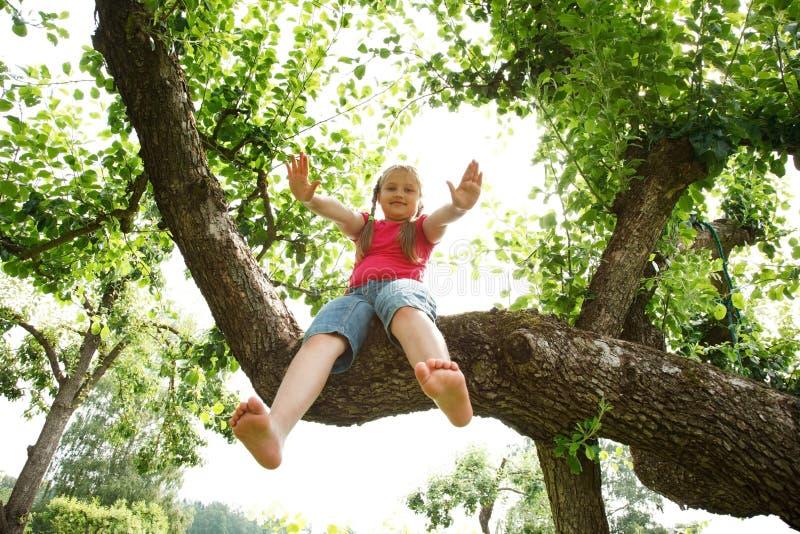 A menina escalou na árvore foto de stock royalty free