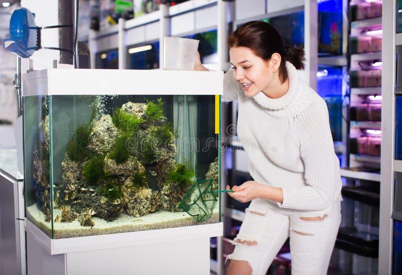 A menina escolhe os peixes que trava foto de stock
