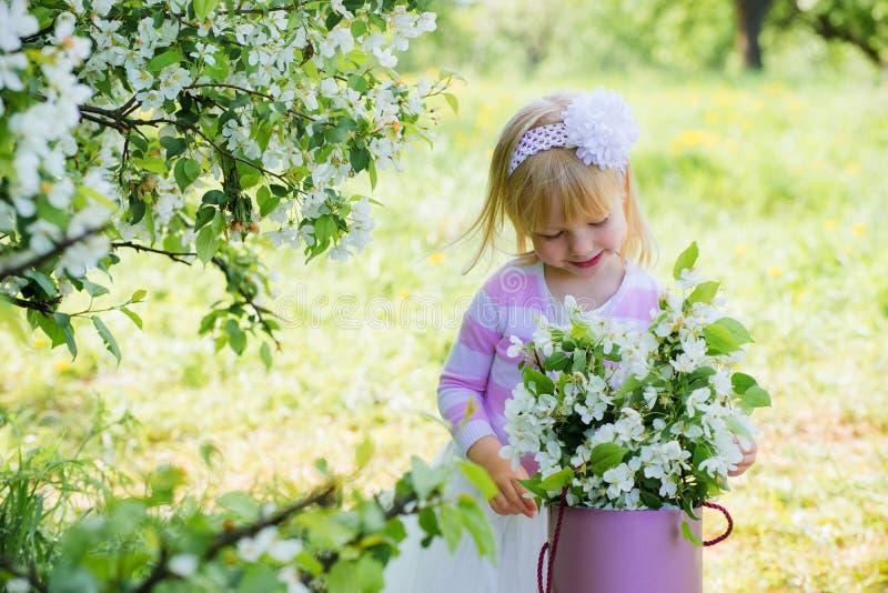 A menina está considerando um galho de uma árvore de maçã de florescência fotografia de stock royalty free