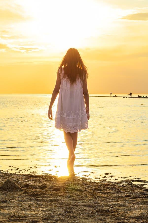 A menina está estando na praia no fundo do por do sol fotografia de stock royalty free