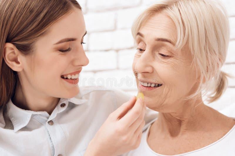 A menina está importando-se com a mulher idosa em casa A menina traz o café da manhã na bandeja A menina está alimentando a mulhe fotografia de stock