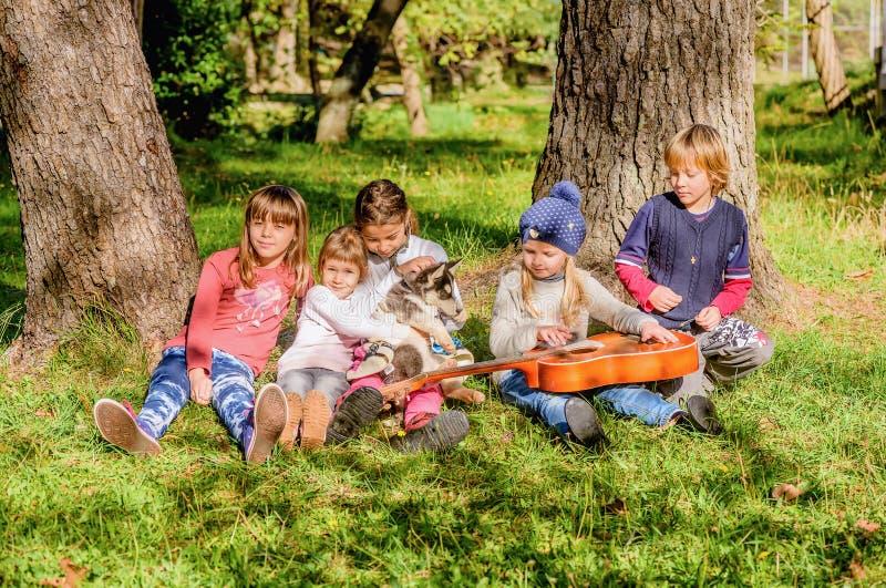 A menina está jogando a guitarra a um grupo de amigos e de um cão de puxar trenós fotos de stock