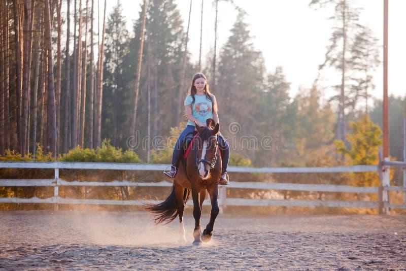 a menina está montando um cavalo imagem de stock royalty free