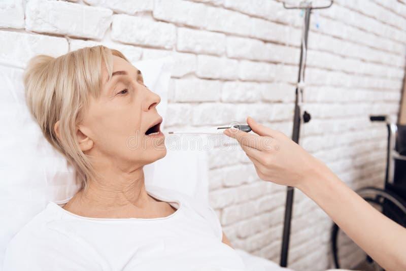 A menina está nutrindo a mulher idosa em casa A menina está verificando a temperatura com o termômetro eletrônico imagens de stock