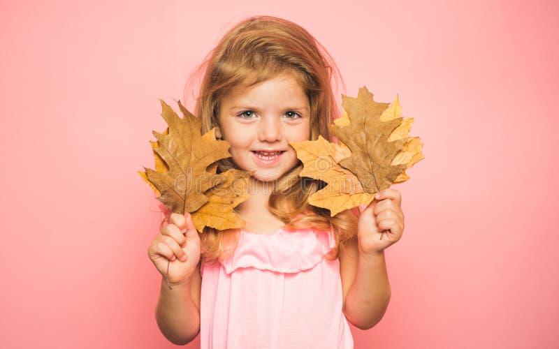 A menina está preparando-se para o dia da venda das crianças do outono menina bonito na roupa sazonal de um outono Autumn Time Es fotografia de stock royalty free
