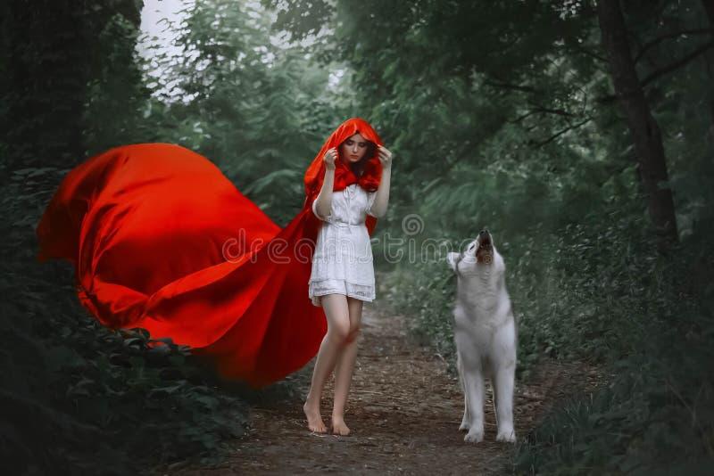 A menina fabulosa com cabelo escuro no vestido branco leve curto cobre sua cabeça com a capa da vibração de voo vermelha brilhant imagens de stock