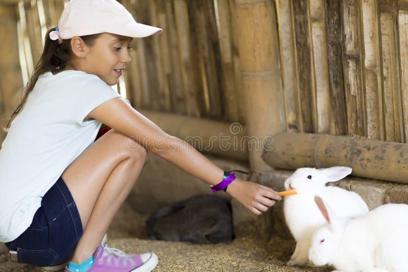 A menina feliz alimenta o coelho imagem de stock