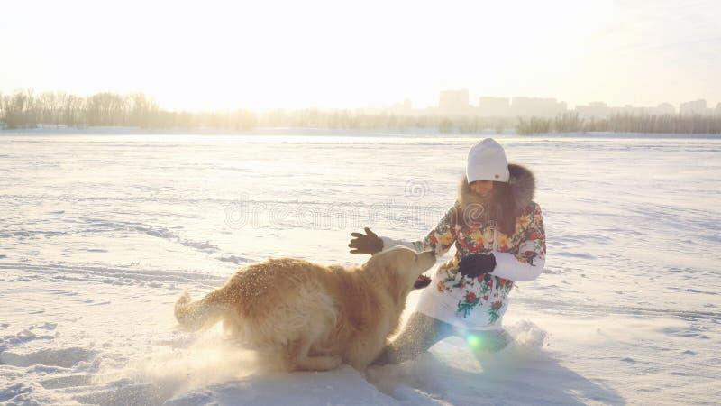 A menina feliz bonita nova joga com um cão do perdigueiro na neve no inverno no dia ensolarado durante o tempo do por do sol fotografia de stock