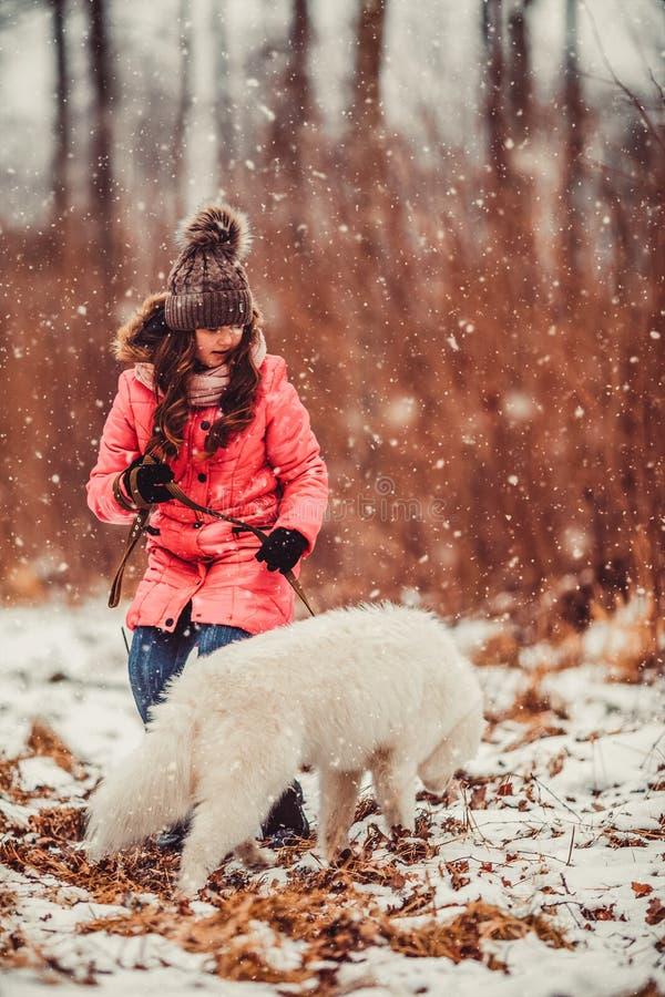 Menina feliz com o cão do Samoyed na floresta do inverno fotos de stock