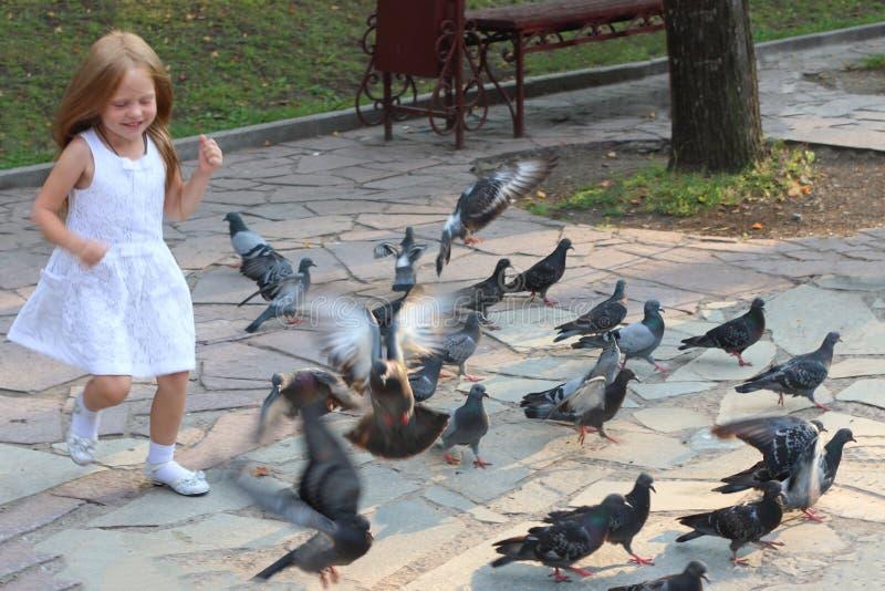 A menina feliz corre entre pombos no parque ensolarado do verão imagem de stock royalty free