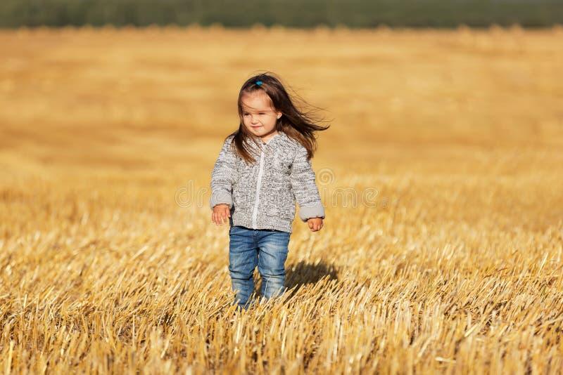 Menina feliz da criança de dois anos que anda em um campo colhido imagens de stock