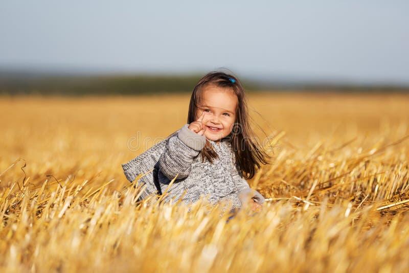 A menina feliz da criança de dois anos que anda no verão colheu o campo imagem de stock royalty free