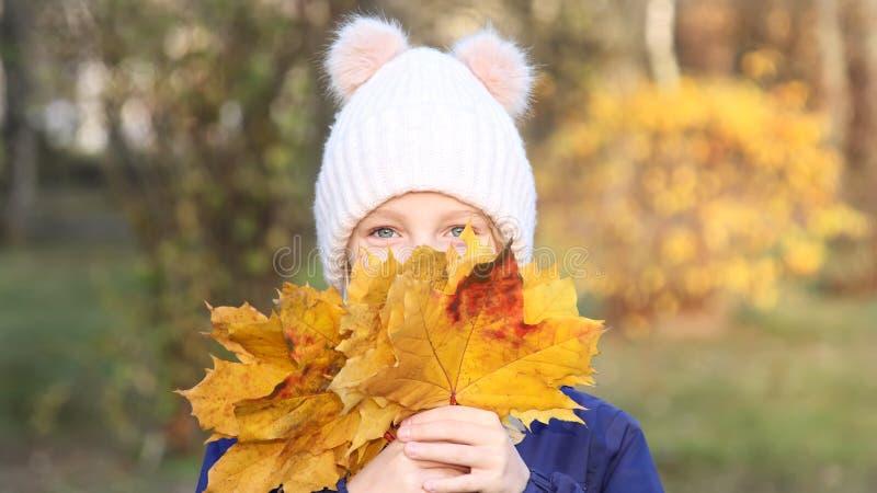 A menina feliz da criança em um chapéu feito malha morno recolhe o ramalhete das folhas amarelas outono, caminhada no parque fotos de stock royalty free