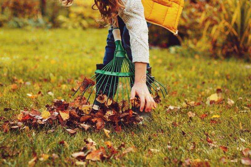 A menina feliz da criança que joga o jardineiro pequeno no outono e que escolhe sae na cesta Trabalho sazonal do jardim imagem de stock