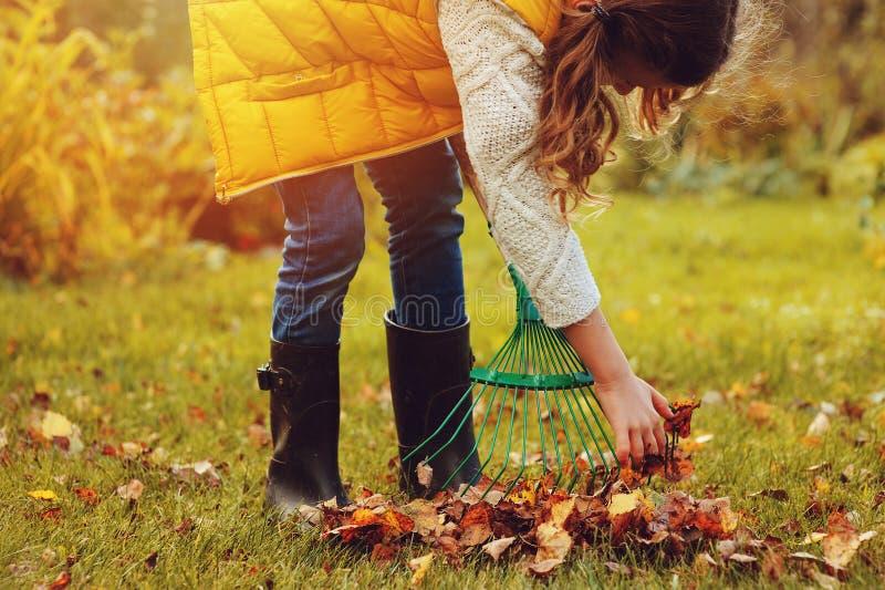 A menina feliz da criança que joga o jardineiro pequeno no outono e que escolhe sae na cesta Trabalho sazonal do jardim foto de stock