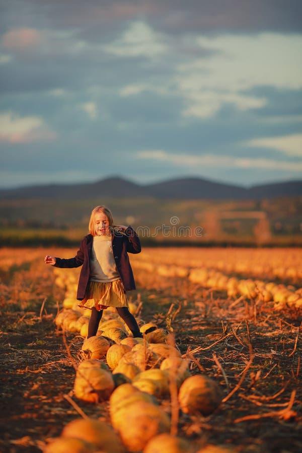 Menina feliz na obscuridade - o revestimento azul e a saia alaranjada estão em abóboras no campo no por do sol Halloween Paisagem imagem de stock