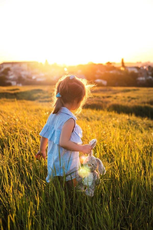 Menina feliz no campo do verão no por do sol imagem de stock royalty free