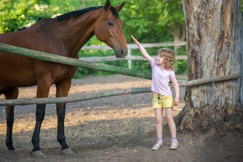 Menina feliz que afaga um cavalo, estando perto da cerca no estábulo fotos de stock