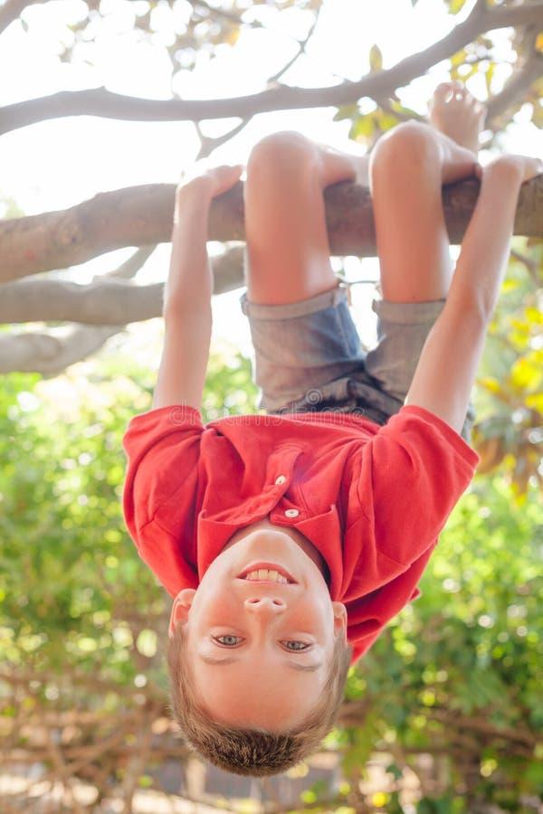 Menina feliz que pendura de uma ?rvore em um parque do ver?o imagem de stock royalty free
